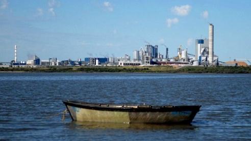 """Río Uruguay: estudios de impacto ambiental revelan que hay """"contaminaciónleve"""""""
