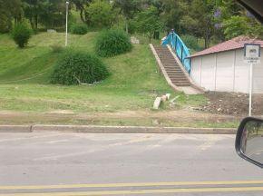 escalera parque espacios publicos