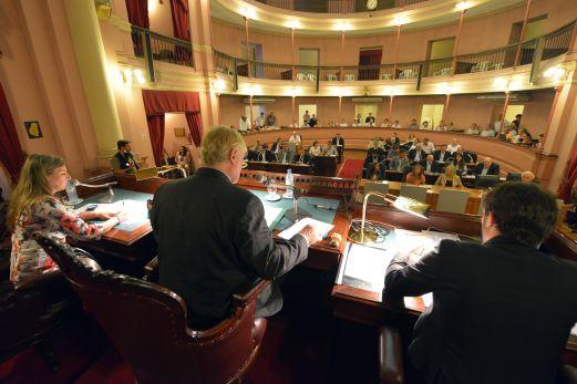 diputados impuestos inmobiliario automotor