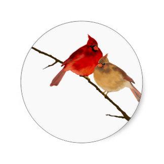 cardenal redondo 2