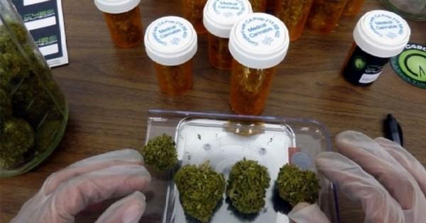 marihuana medicinal morante