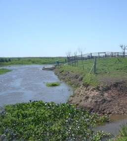 """Delta: obras hídricas que """"no cumplen con requisitos ambientales"""" impiden que baje elagua"""