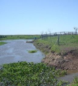 El humedal Delta del Paraná, en la provincia de Entre Ríos
