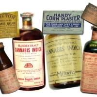 "Cannabis medicinal: Presentan un proyecto ""integral"""