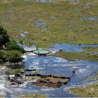Científico del INTA relaciona el monocultivo de soja y las inundaciones