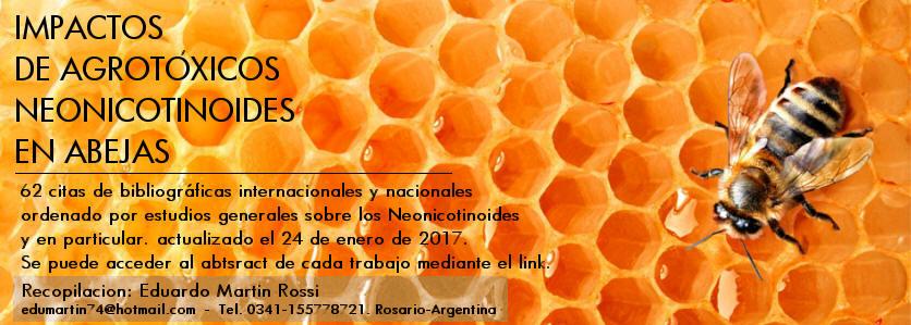 abejas8