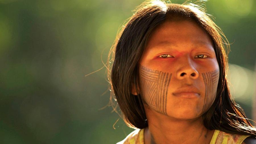 brazil-indigenous