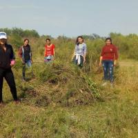 En Santa Elena, vecinos y vecinas estuvieron limpiando una hectárea para cultivar