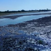 Denuncian bloqueos de lagunas y arroyos