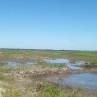 Detectan más terraplenes irregulares en el norte de Entre Ríos