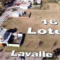Loteo y venta de terrenos municipales